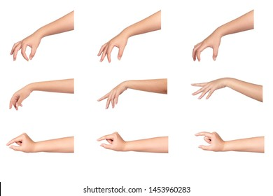 Set of young woman hand isolated on white background.