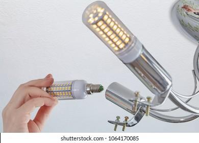 Setts of LED corn lamp in a room lighting fixture.