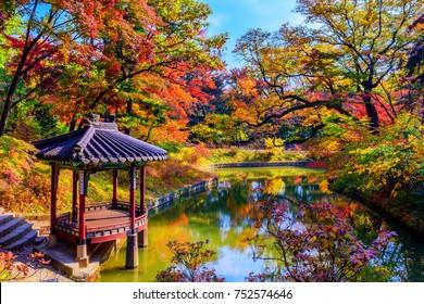 SEUOL, Changdeokgung palace at Autumn in South Korea.