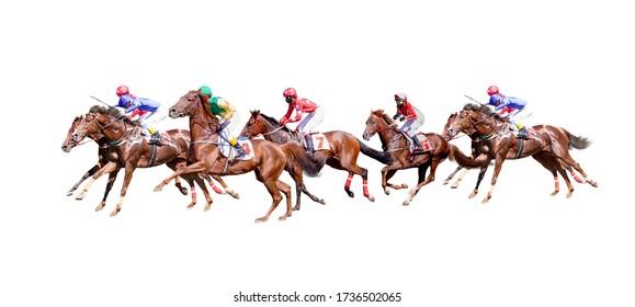 Seven Jokey on a thoroughbred horse runs isolated on white background