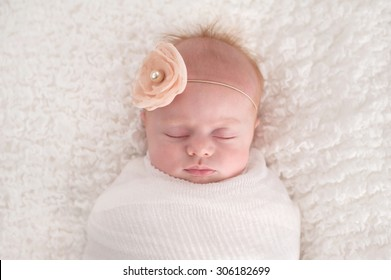 A seven week old baby girl swaddled in white and wearing a flower headband.