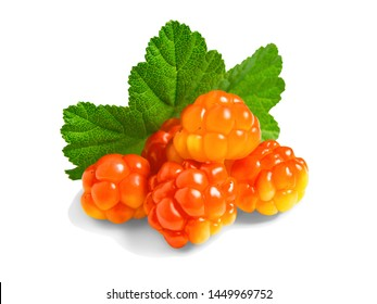 Several berries of cloudberries with a leaf isolated on a white background with clipping paths with shadow and without shadow