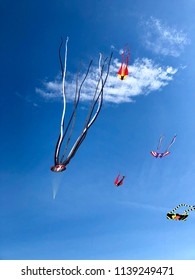 Several colorful kites in various shapes fly over the beach in Coney Island Beach, Brooklyn.