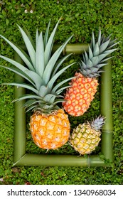 Several different shape ripe pineapples