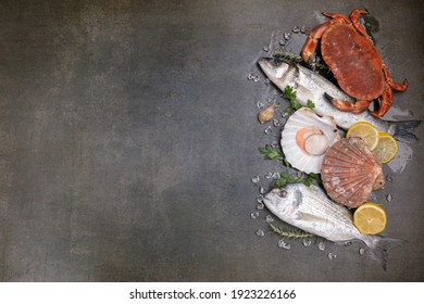 Several fishes, crab and shells on a black background with space for writing