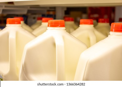 Several gallon size jugs of milk in the refrigerator section of the grocery store