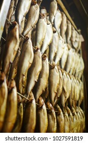 Several rows of tasty smoked herrings or other fish hanging on wires