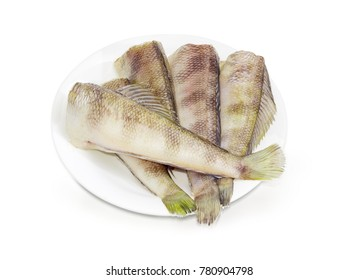 Several uncooked carcasses of the notothenia fish without of the heads on a white dish on a white background