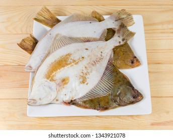 Several uncooked plaices also known as flatfish on white square dish on a wooden rustic table