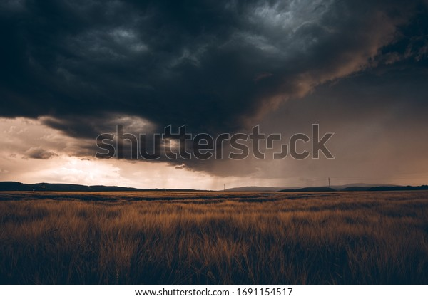 Severe weather with dark clouds and rain over a field of Grain
