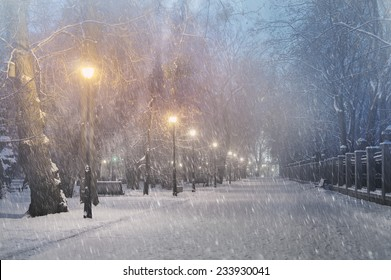 Severe weather in Kiev citizens favorite park, twilight hid fog and snowfall old trees, fall asleep benches, lights shine through the mist, cold and damp, a strong wind blows snowflakes quickly