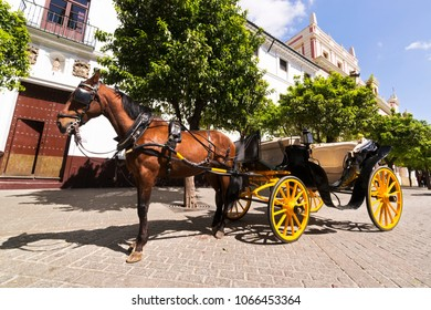 Sevilla carriages , Andalusia , Spain