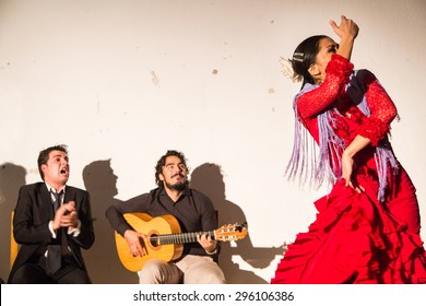 SEVILLA, SPAIN - JANUARY 4, 2015: Woman performing flamenco dance in Sevilla, Spain on January 4, 2015