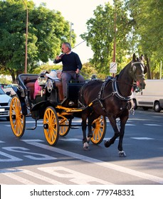 Seville, Andalucia, Spain - November 07, 2017: The cabby drives a horse drawn carriage with tourists