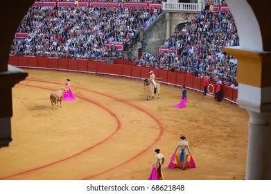 "SEVILLE - APRIL 30:  Bullfighter David Fandila ""El Fandi"" guides the bull toward the picador during a fight for a sold out crowd at the Plaza de Toros de Sevilla April 30, 2009 in Seville, Spain."