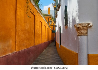 Seville Calle vida near Juderia in Andalusia Sevilla of Spain