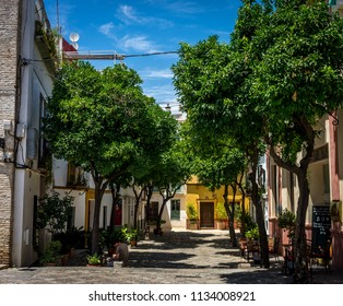 Seville, Spain : 18 June 2017: Tourists take shelter in shade of the trees in Seville on a hot sunny summer day, Europe