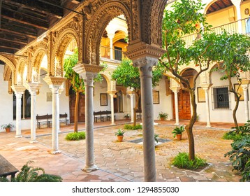 Seville, Spain - Mar 6, 2012: Casa de los Pinelo (House of the Pinelo), a Renaissance palace which is currently the headquarters of the Academy of Fine Arts.