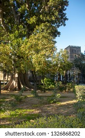 Seville Spain Murillo park