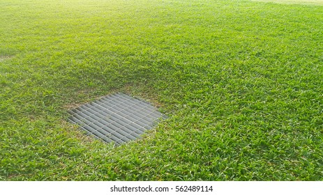 Sewer in grassland