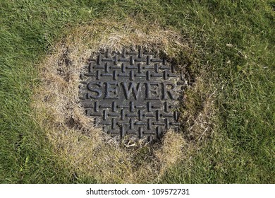 Sewer iron cover in the middle of lawn