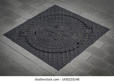 Sewer manhole in Perm animal style