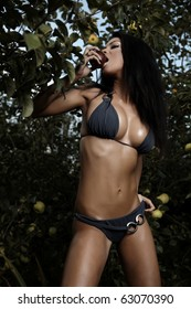 Sexual beauty dressed bikini poses in an autumn garden of apples.
