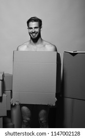 Sexuality and moving concept. Macho with smiling face covers nudity. Man with beard stands on pink background. Guy with naked body holds box in front.