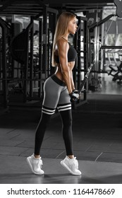 Sexy athletic girl working out in gym. Fitness woman doing exercise for triceps