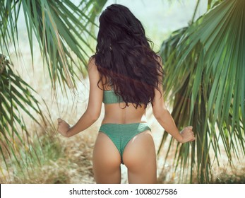 Sexy back of a beautiful unrecognizable luxury slim woman with perfect tan and curly hair relaxing and sunbathing in bikini on palm background palm. Sporty woman's buttock close-up on the beach and