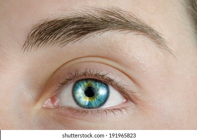 Sexy Blue Eye. High definition image.