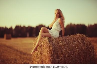 sexy girl hay field beautiful 260nw 1120448141