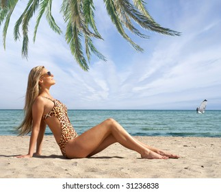 Sexy lady wearing swimsuit on the beach