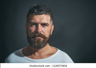 Sexy look of male model man. Bearded man. Stylish hipster brutal man with beard, mustache, beautiful hairstyle. Serious unshaven man. Portrait of masculinity. Advertise barbershop concept. Copy space