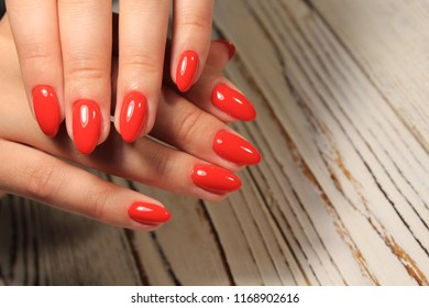 sexy red manicure on beautiful female hands