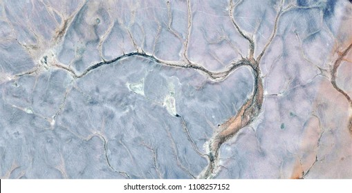 sexy tree, tribute to Pollock, abstract photography of the deserts of Africa from the air, aerial view, abstract expressionism, contemporary photographic art,