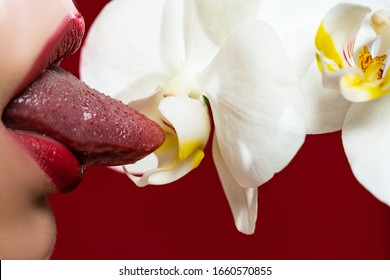 Sexy womans lips. Erotic concept. Sexy lips with a orchid. Oral sex. Erotic woman secret and sex symbols concept. Orgasm. Talk sex. Fresh lubricant