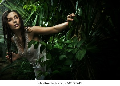 Sexy young brunette beauty in a rain forest