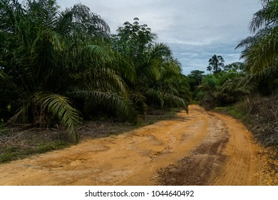 SG LEMBING, MALAYSIA - NOVEMBER 28, 2017: Rainforest Challenge Global Series Finals. Competitors convoy in the jungle of Malaysia moving between camp sites