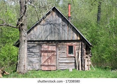 Shabby and abandoned wooden hut in the forest at sunny summer day