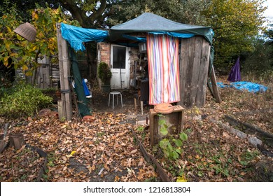 Shabby ramshackle lean to shelter in a messy garden