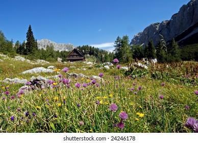 A shack in the Julian Alps - Slovenia