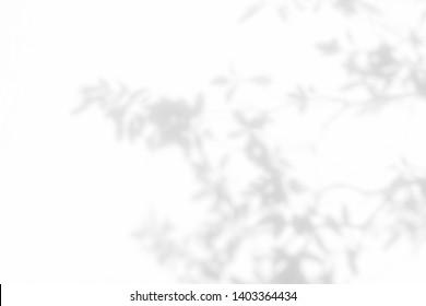 Imágenes, fotos de stock y vectores sobre Shape Shadow