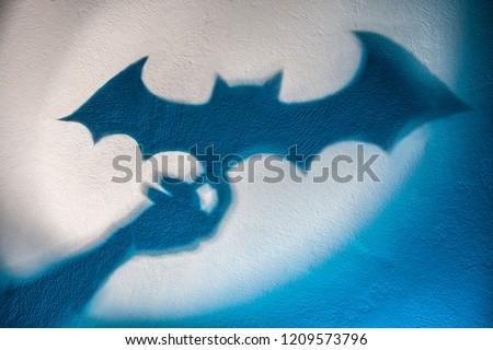 Shadow of a bat
