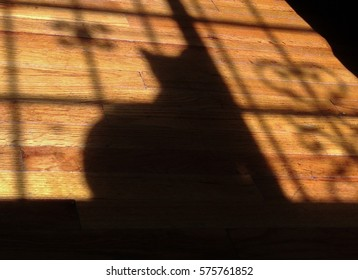 Shadow of a cat and decorative window grating on a wooden floor