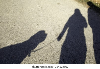 Shadow couple and dog in park, animals and nature