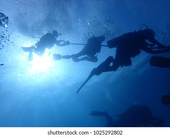 Shadow of Divers under the water