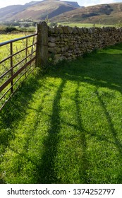 Shadow of gate on bright green grass after the rain. Troutbeck, Lake District, UK. October.