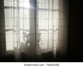 Shadow and light through the window