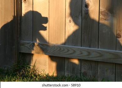 Shadow of Man and Dog